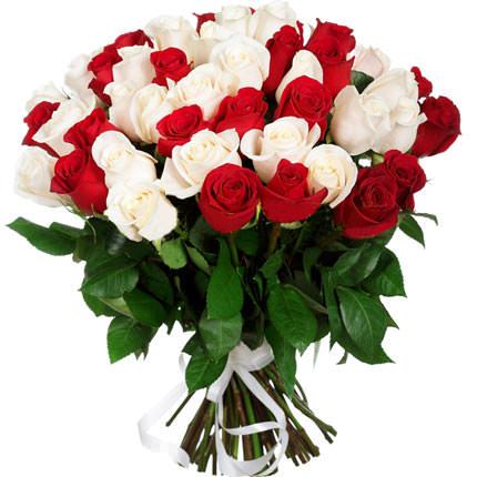 51 красная и белая роза  - купить в Украине
