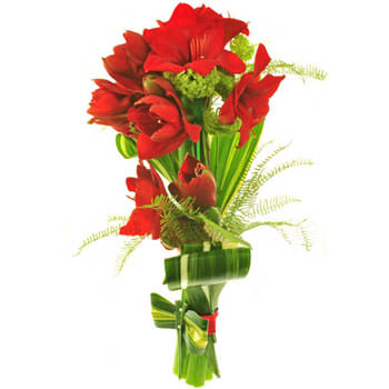 Bouquet of amaryllis buy bouquet of amaryllis order for Amaryllis en bouquet