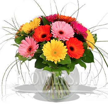 Bright bouquet of Gerbera  - buy in Ukraine