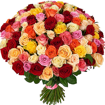 101 multi-colored roses  - buy in Ukraine