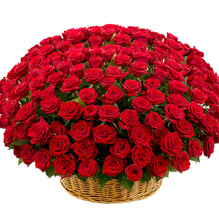 301 red roses  - buy in Ukraine
