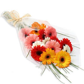 Bouquet of Gerberas  - buy in Ukraine
