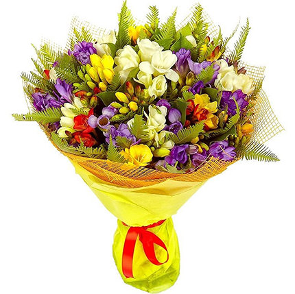 49 multicolored freesias  - buy in Ukraine