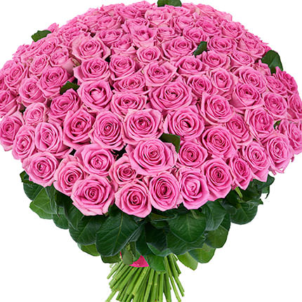 101 pink roses  - buy in Ukraine