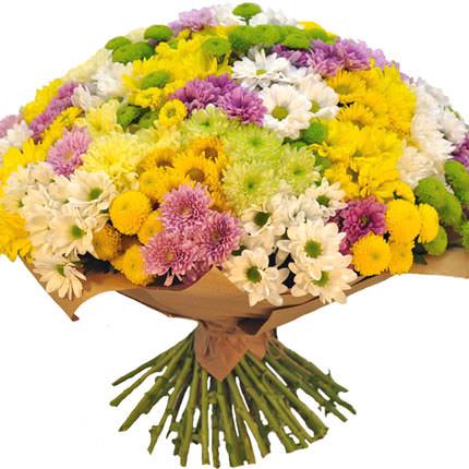 101 разноцветная хризантема  - купить в Украине