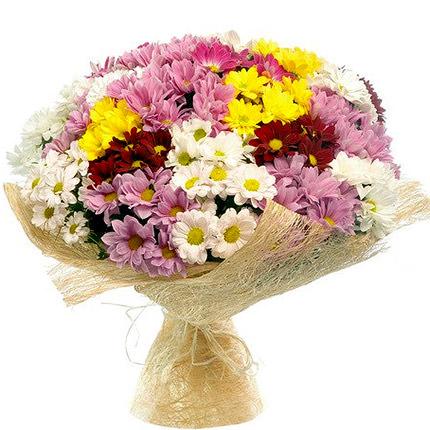 25  multi colored chrysanthemums  - buy in Ukraine