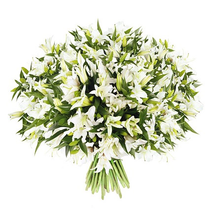 51 white lilies  - buy in Ukraine