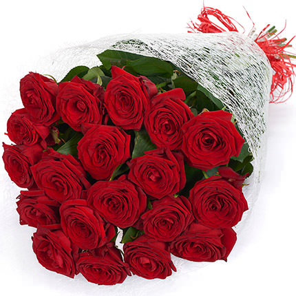 19 червоних троянд — замовити букет з доставкою в Київ, Львів ...
