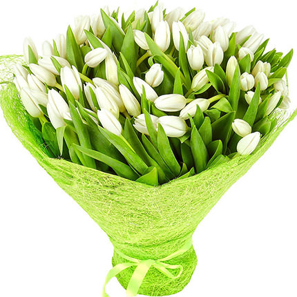 101 white tulips  - buy in Ukraine