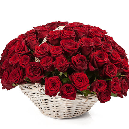 "Basket ""101 scarlet roses""  - buy in Ukraine"