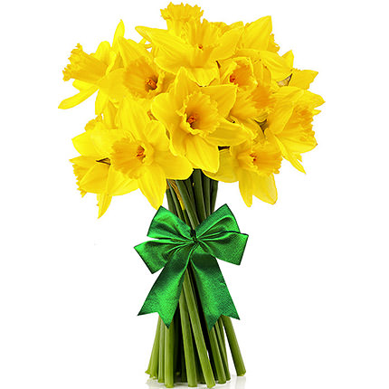 Bouquet of daffodils  - buy in Ukraine