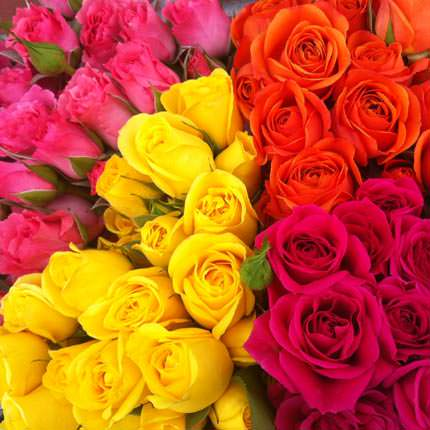 Mix of Spray Roses (by an item)  - buy in Ukraine