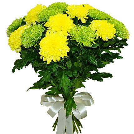 15 жовтих і зелених хризантем  - придбати в Україні