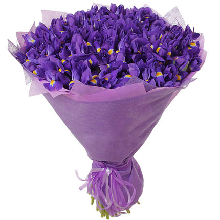 51 purple irises  - buy in Ukraine