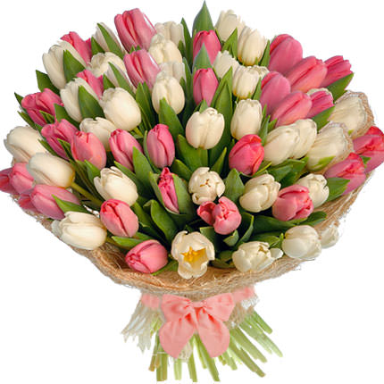 51 white and pink tulips  - buy in Ukraine