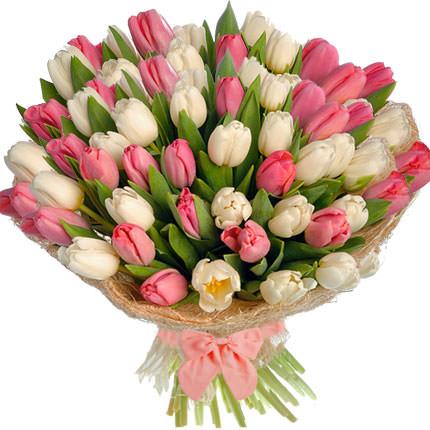 51 белый и розовый тюльпан  - купить в Украине