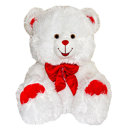 Teddy  - buy in Ukraine