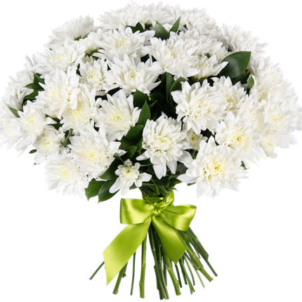11 веток белой хризантемы  - купить в Украине