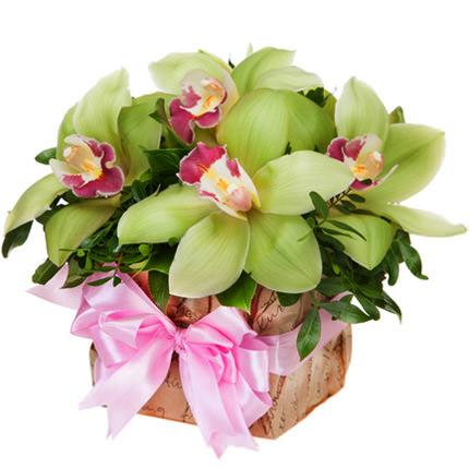 """Цветы в коробке """"Сказочные орхидеи""""  - купить в Украине"""