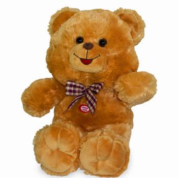 Teddy Bear (brown)  - buy in Ukraine