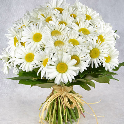 "Bouquet ""25 sunny camomiles""  - buy in Ukraine"