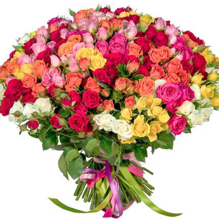101 разноцветная кустовая роза  - купить в Украине