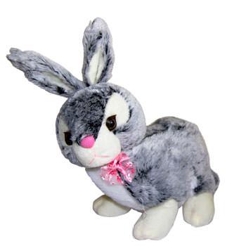 Rabbit  - buy in Ukraine