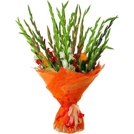 25 multicolored gladioluses  - buy in Ukraine