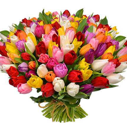 101 multicolored tulips! – from Flowers.ua