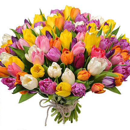51 multicolored tulips!  - buy in Ukraine