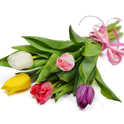 5 разноцветных тюльпанов  - купить в Украине