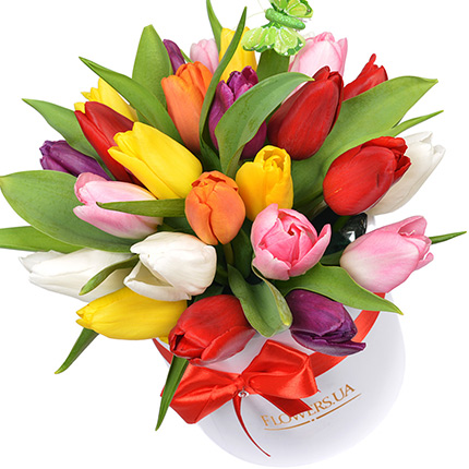 "Flowers in a box ""25 bright tulips""  - buy in Ukraine"