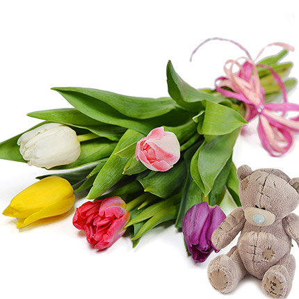 5 tulips (with teddy bear)  - buy in Ukraine