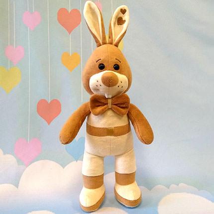 "Bunny ""Sasha""  - buy in Ukraine"