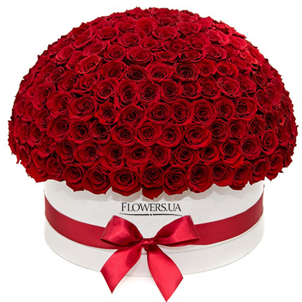 "Flowers in a white box ""151 red roses""  - buy in Ukraine"