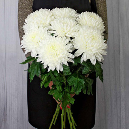 7 білих хризантем  - придбати в Україні