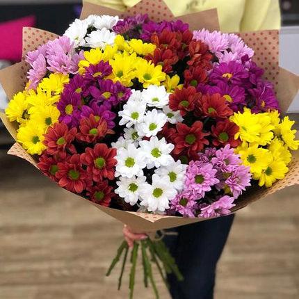 15 разноцветных хризантем  - купить в Украине