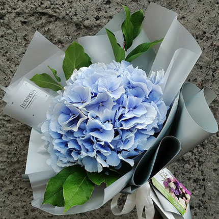 "Author's bouquet ""Hawaii""  - buy in Ukraine"