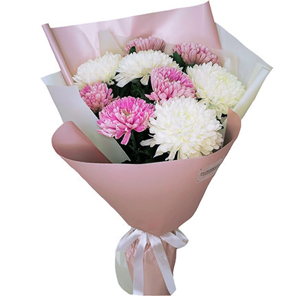 9 white and pink chrysanthemums  - buy in Ukraine