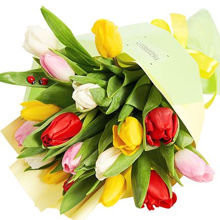 """Букет """"17 різнокольорових тюльпанів""""  - придбати в Україні"""