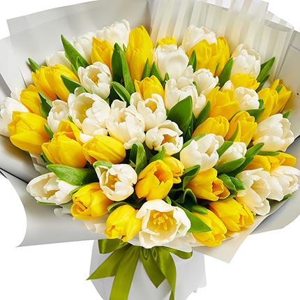 51 белый и желтый тюльпан  - купить в Украине
