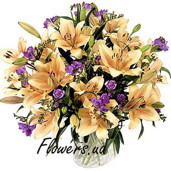 Bouquet of Lilies and Freesia  - buy in Ukraine