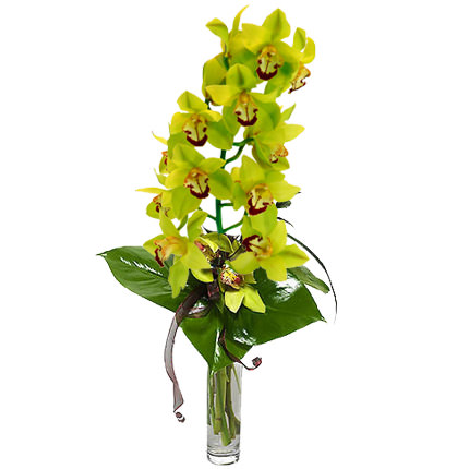 "Bouquet ""Wild Orchid""  - buy in Ukraine"