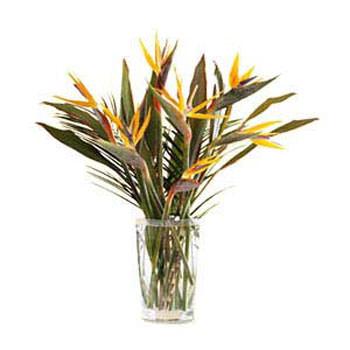 "Bouquet ""The spark of feeling""  - buy in Ukraine"