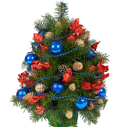 "Fir tree ""Christmas Night""  - buy in Ukraine"