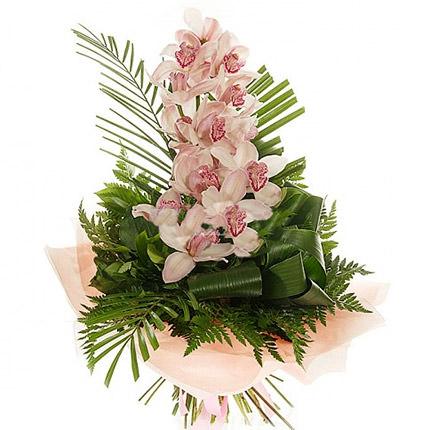 Гілка Орхідей
