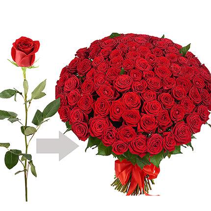 Surprise darling!  - buy in Ukraine