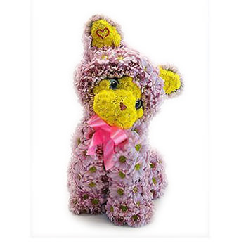 Цветочный котенок  - купить в Украине