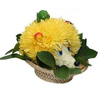 Forest hedgehog  - buy in Ukraine