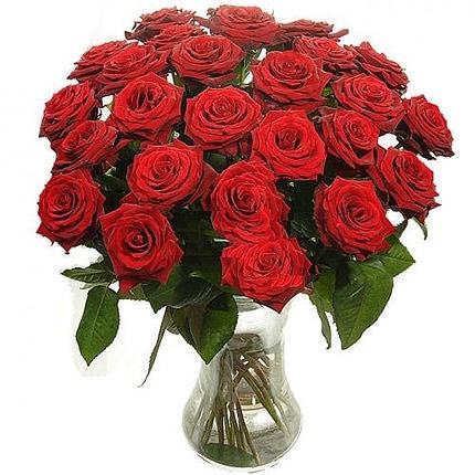 23 красные розы  - купить в Украине